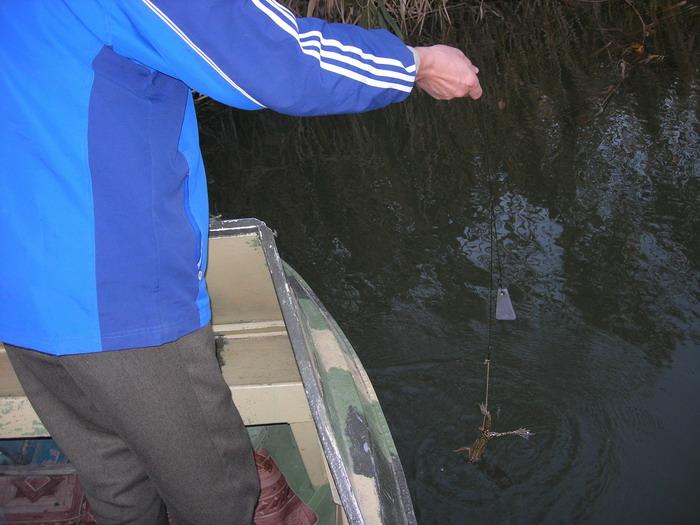 астраханская область рыбалка жилье у частников