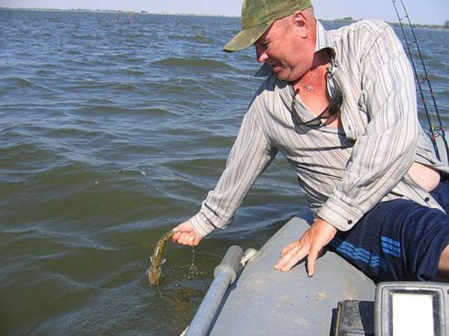 рыбалка в сасыколи астраханской области видео