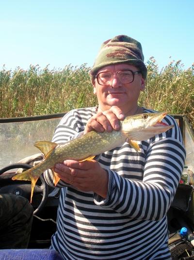 рыбалка на белинском банке