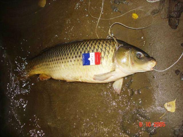 рыбалка в астрахани на месяц