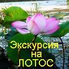 ВерхЛево3